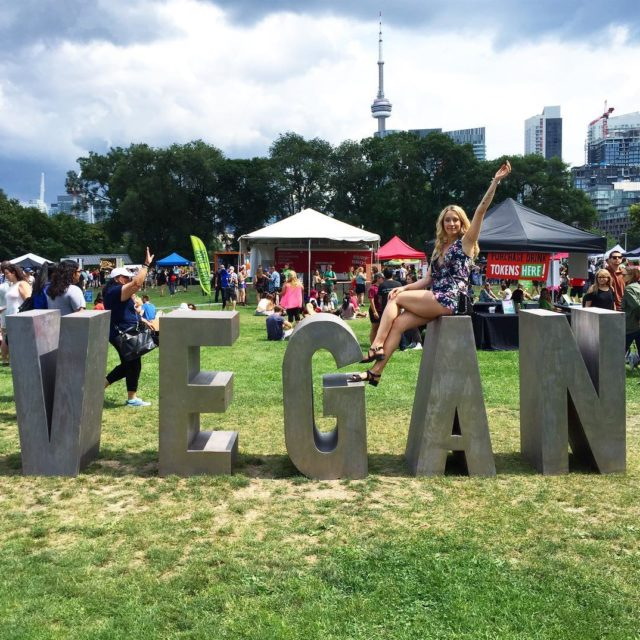 Vegan food and drink festival watch my Instagram stories ifhellip